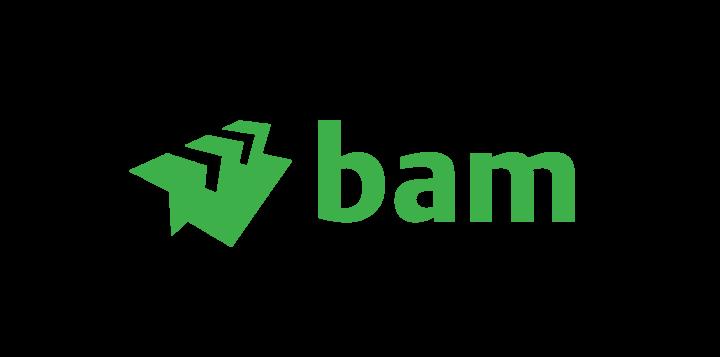 BAM Energie & Water B.V.