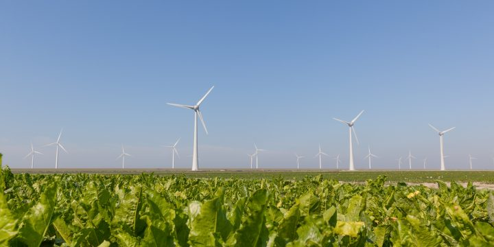 Groene waterstof in de gebouwde omgeving: (nog) geen alternatief voor warmtenetten